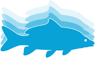 Fish Tracker Fishing Guide Services Ireland